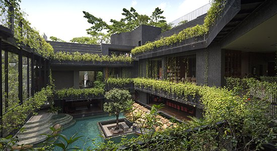 The_house_interior_is_a_sanctuary_for_nature_and_l (1)