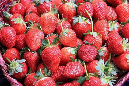 2009-08-26-festa-do-morango-o-morango-foto-iderlon-calasancio-125