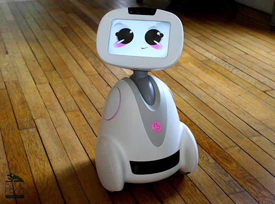 BuddyRobot