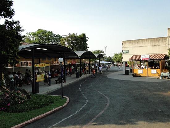 expo sao roque
