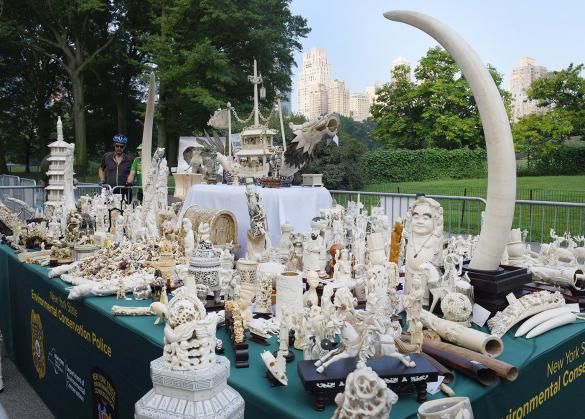 Marfim - nova york
