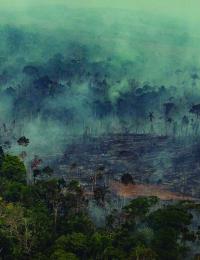 Forest Fires in Porto Velho, Rondônia, Amazon - Third Overflight (2019)Queimadas na Amazônia - Terceiro Sobrevoo (2019)